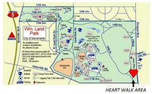 American Heart Association CPR Heart Walk